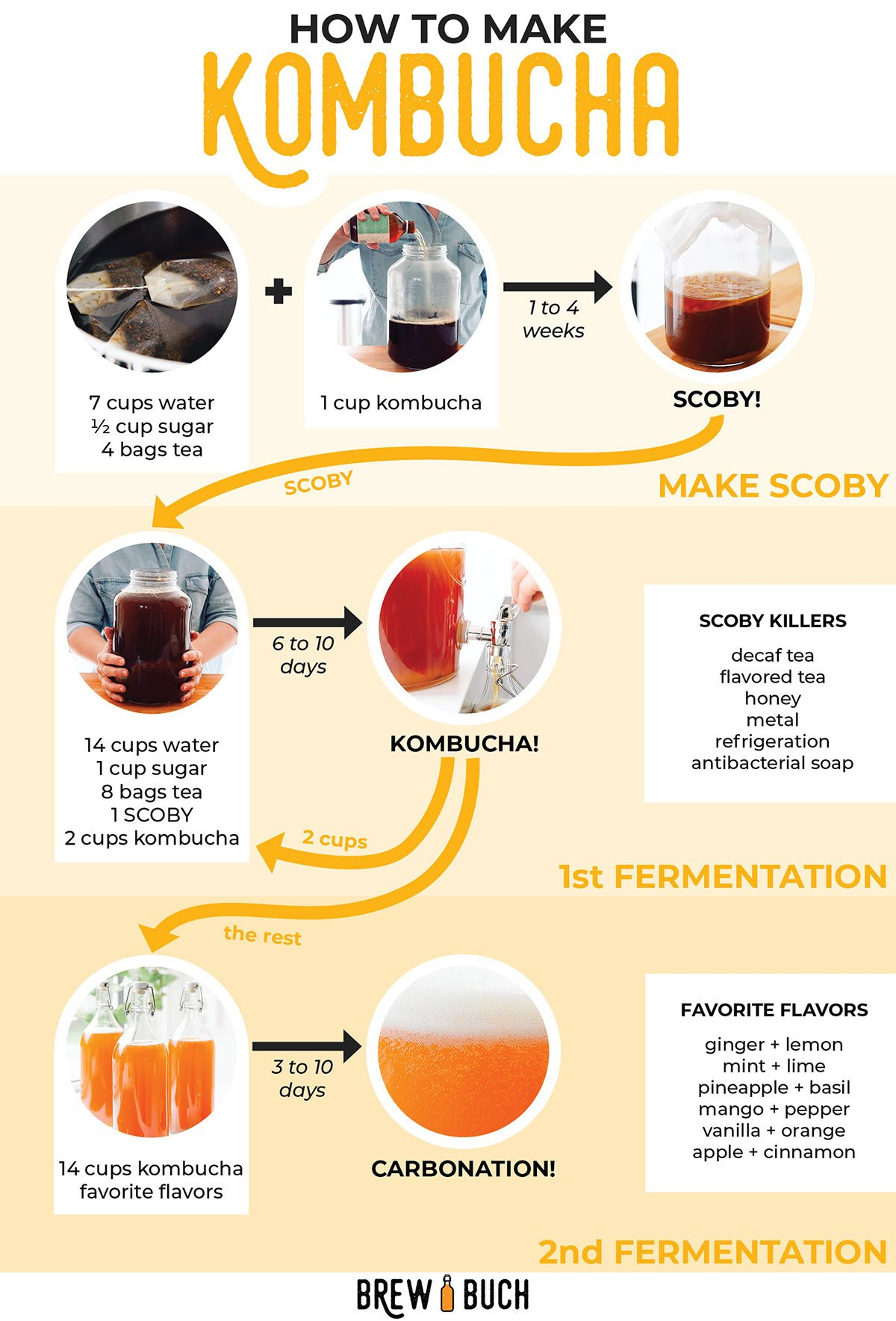 How to make kombucha infographic