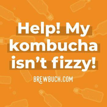 kombucha not fizzy