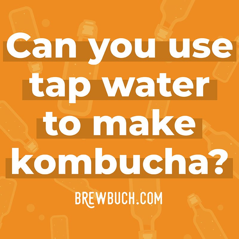 Can you use tap water to make kombucha photo collage