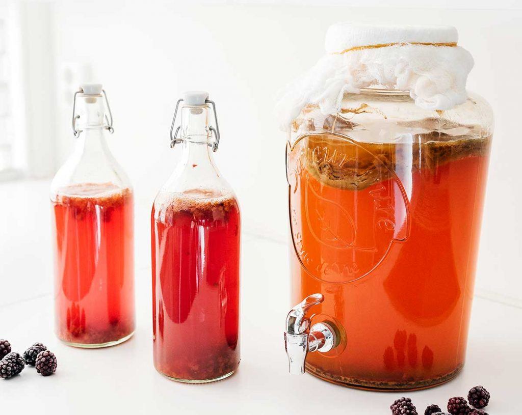 Berry kombucha in fermentation bottles on white background