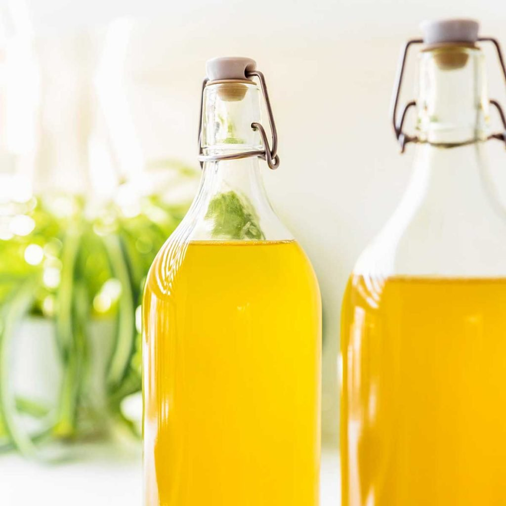 Bottles of green tea kombucha on a white counter with a plant in the background