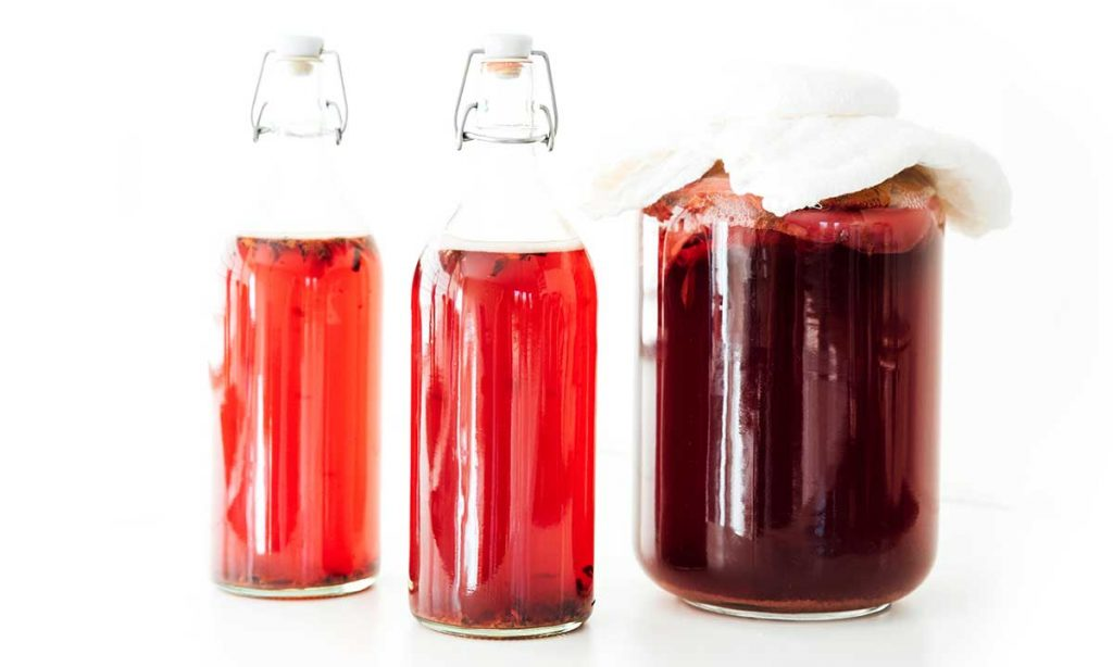 Hibiscus kombucha in fermentation bottles on a white background