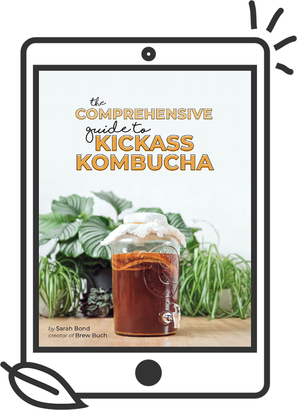 kickass komucha ebook